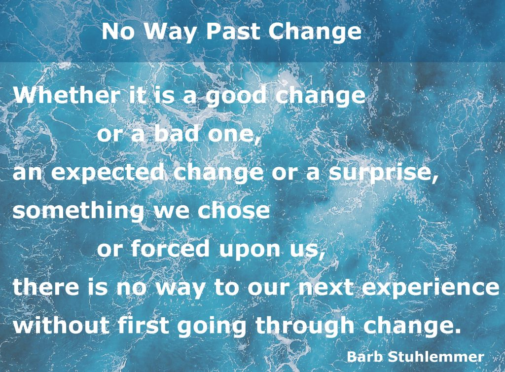 Meme - No way past change